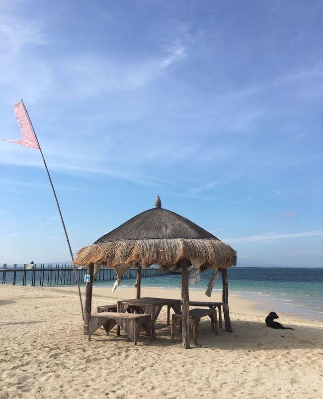 Cadiz Done That. Good Morning Philippines! Sun Sea Sand Beach Joy Before Breakfast Lakawon Island One Beach And His Dog