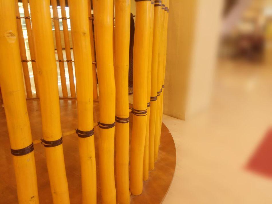 Yellow No People Close-up Indoors  Bamboo Shoots Bamboodesign Bamboo Art