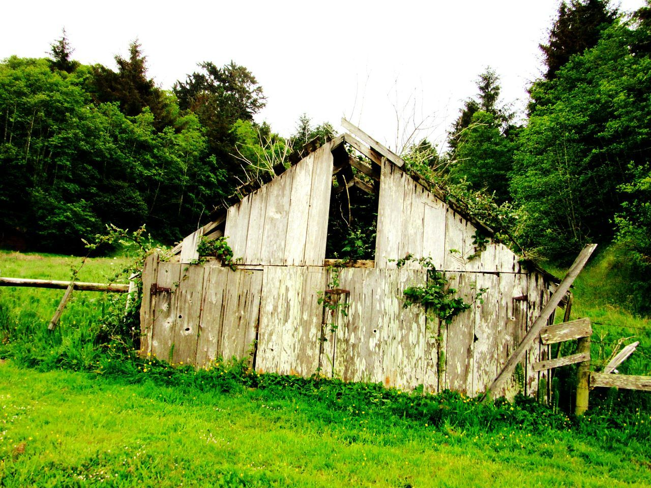 Abandoned Wooden House On Field