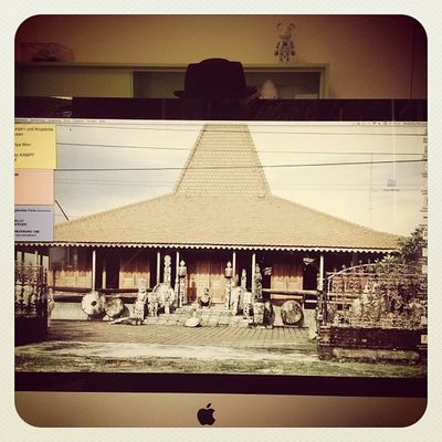 #daily #view #imac with #hat #gooqx #office le_bubu View Office Hat Daily Imac Gooqx
