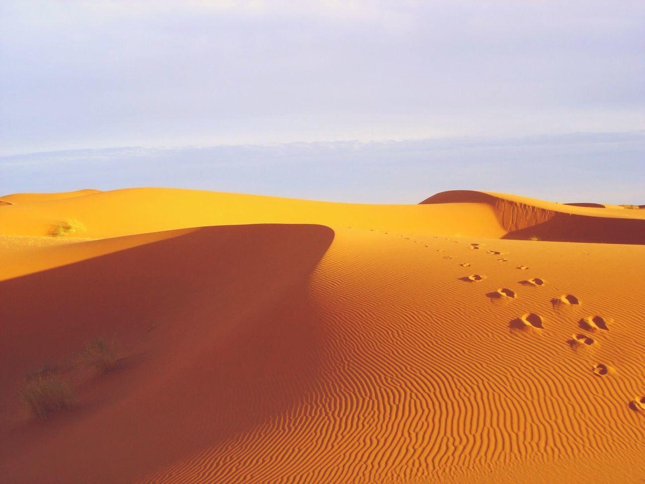 Beautiful stock photos of desert, Absence, Day, Desert, Footprint