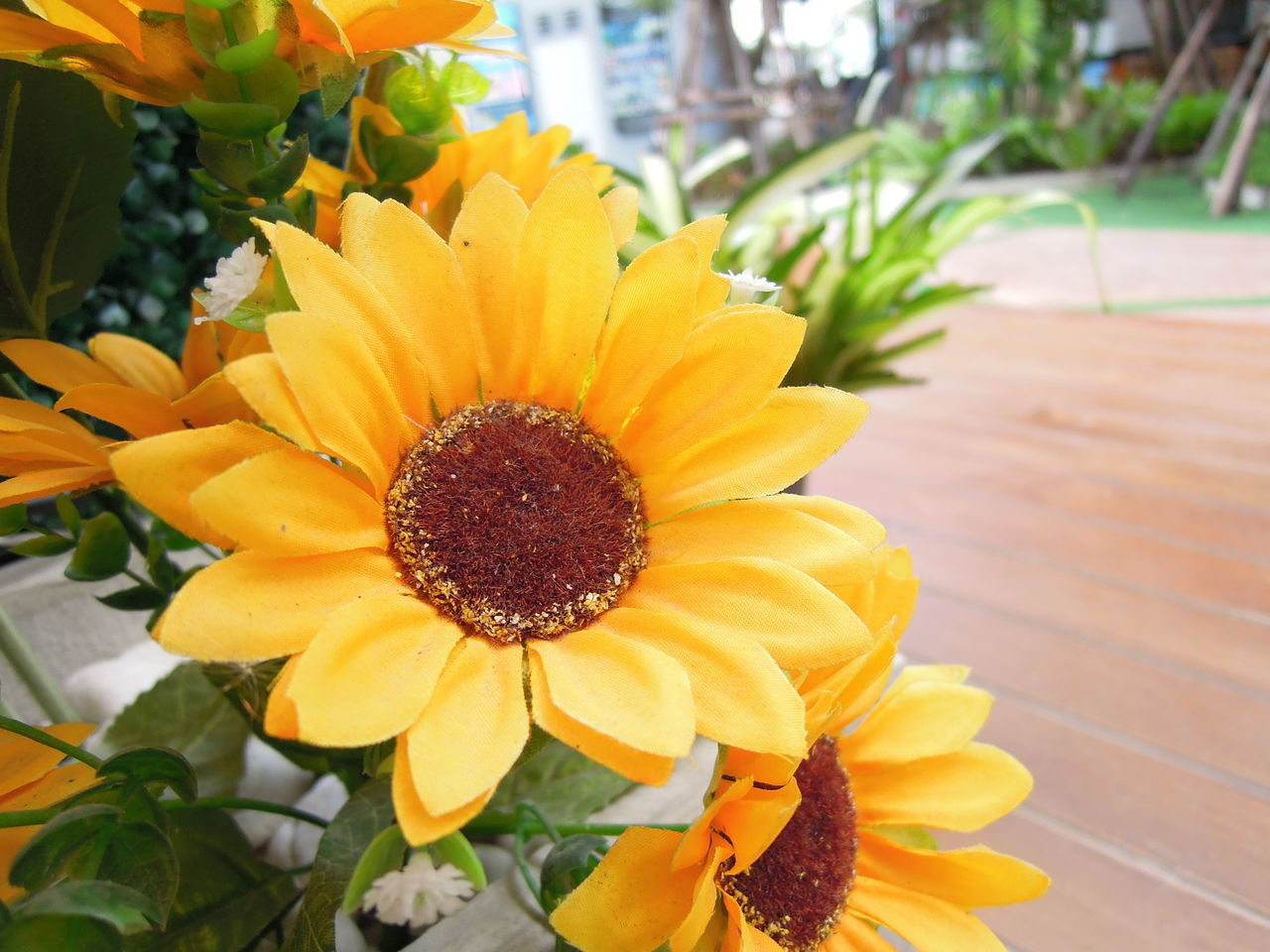 counterfeit sunflower in garden Bloom Blossom Close-up Counterfeit Counterfeit Flower Counterfeit Sunflower Fake Fake Flower Fake Flowers Fake Sunflower Flora Flower Garden Home House Leaf Leaves Nature Nature Park Plant Sunflower Tree Yellow Yellow Flower