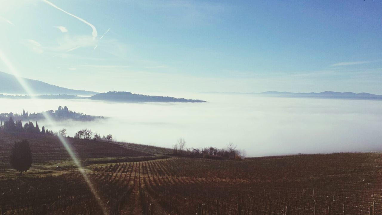 Hills Foggy Morning Podere Castellare Tuscany EyeEm Best Shots Enjoying Life I Love This World Hello World Check This Out The Great Outdoors With Adobe