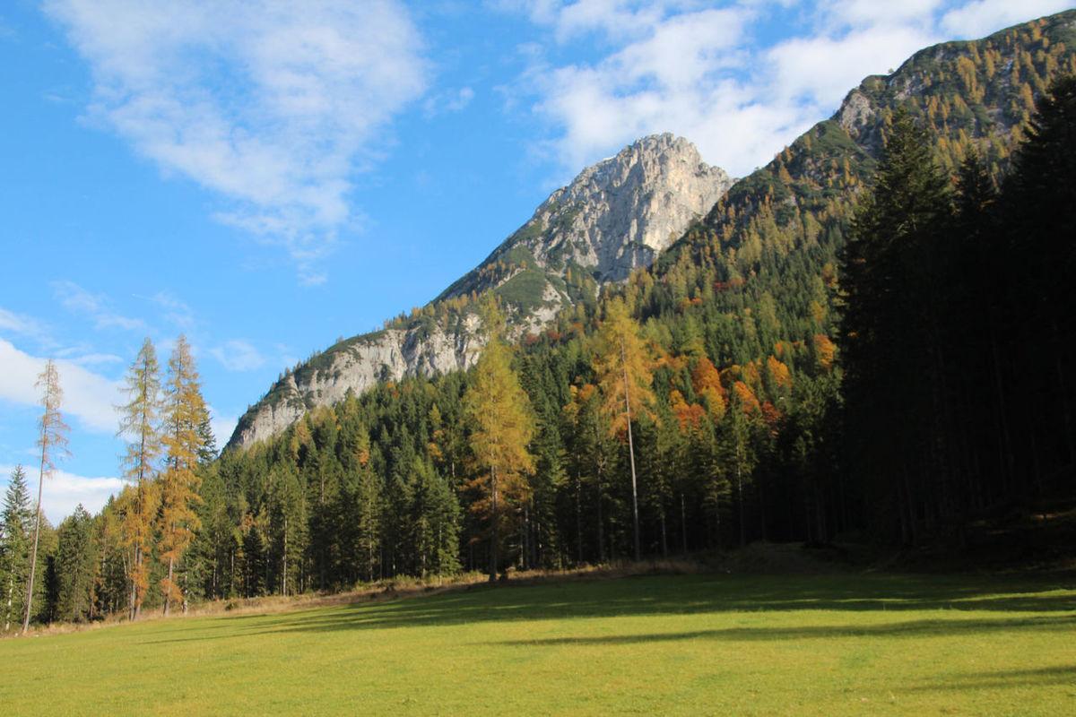 2016 Autumn Day Forest Grass Horizontal Karwendel Landscape Mountain Nature No People Outdoors Pinaceae Pine Tree Pine Woodland Scenics Sky Tirol  Tree