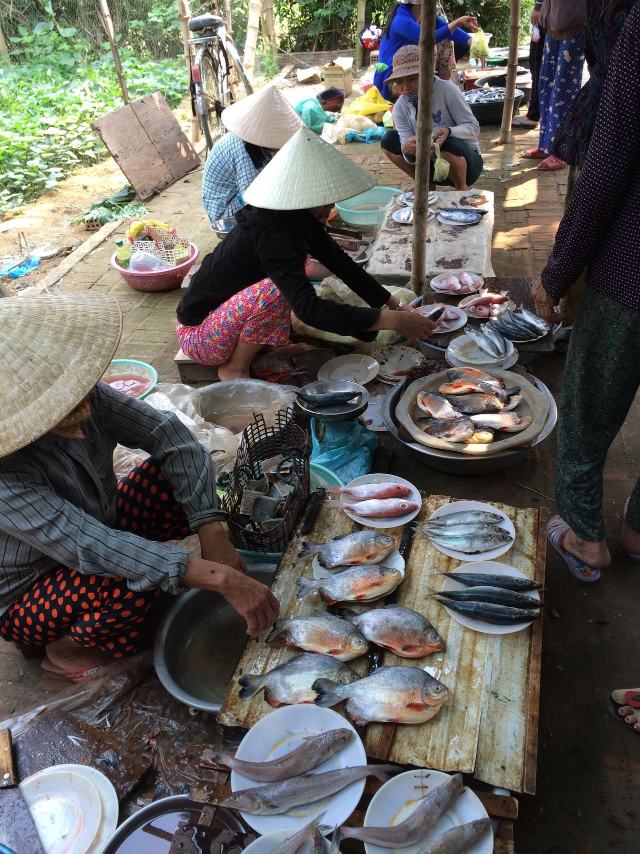 Fish Market Hoi An Vietnam The Photojournalist - 2016 EyeEm Awards