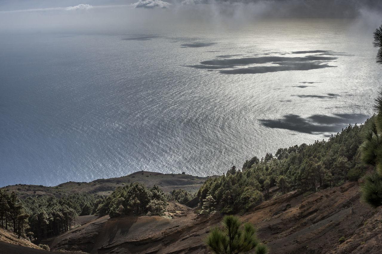 2016_02_ElHierro_ES Atlantic Ocean Canary Islands Cloud Clouds And Sky Cloudscape El Hierro El Hierro Island Landscape Landscape_Collection Landscape_photography No People Pine Tree Pine Trees Wind Windy