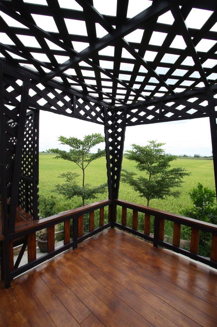 Trees On Grassy Field Seen Through Balcony