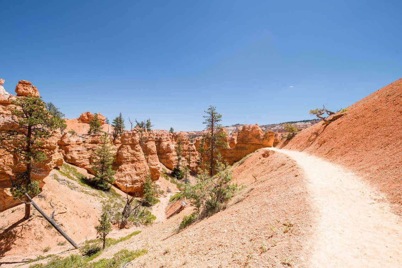 Traveling Landscape Bryce Canyon United States