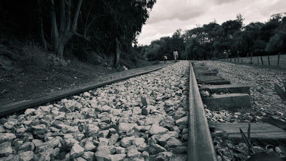 Un camino diferentes direcciones Nature Train Train Line Tren First Eyeem Photo