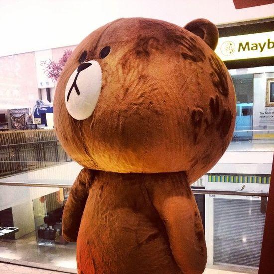 How can you not like Browny Pavilion Kl Travel bear line linebear cute