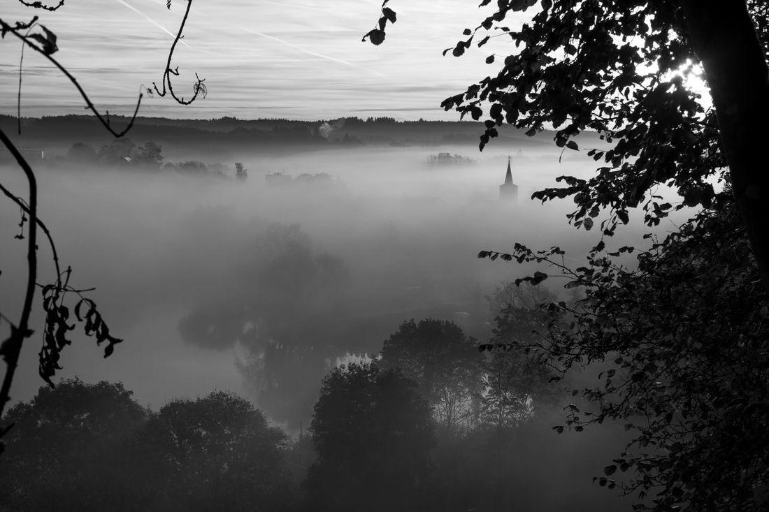 Autumn Beauty In Nature Black And White Blackandwhite Eifel Fog Landscape Maar Misty Misty Morning No People Outdoors Scenics Schalkenmehren Silhouette Tranquil Scene Tranquility Water