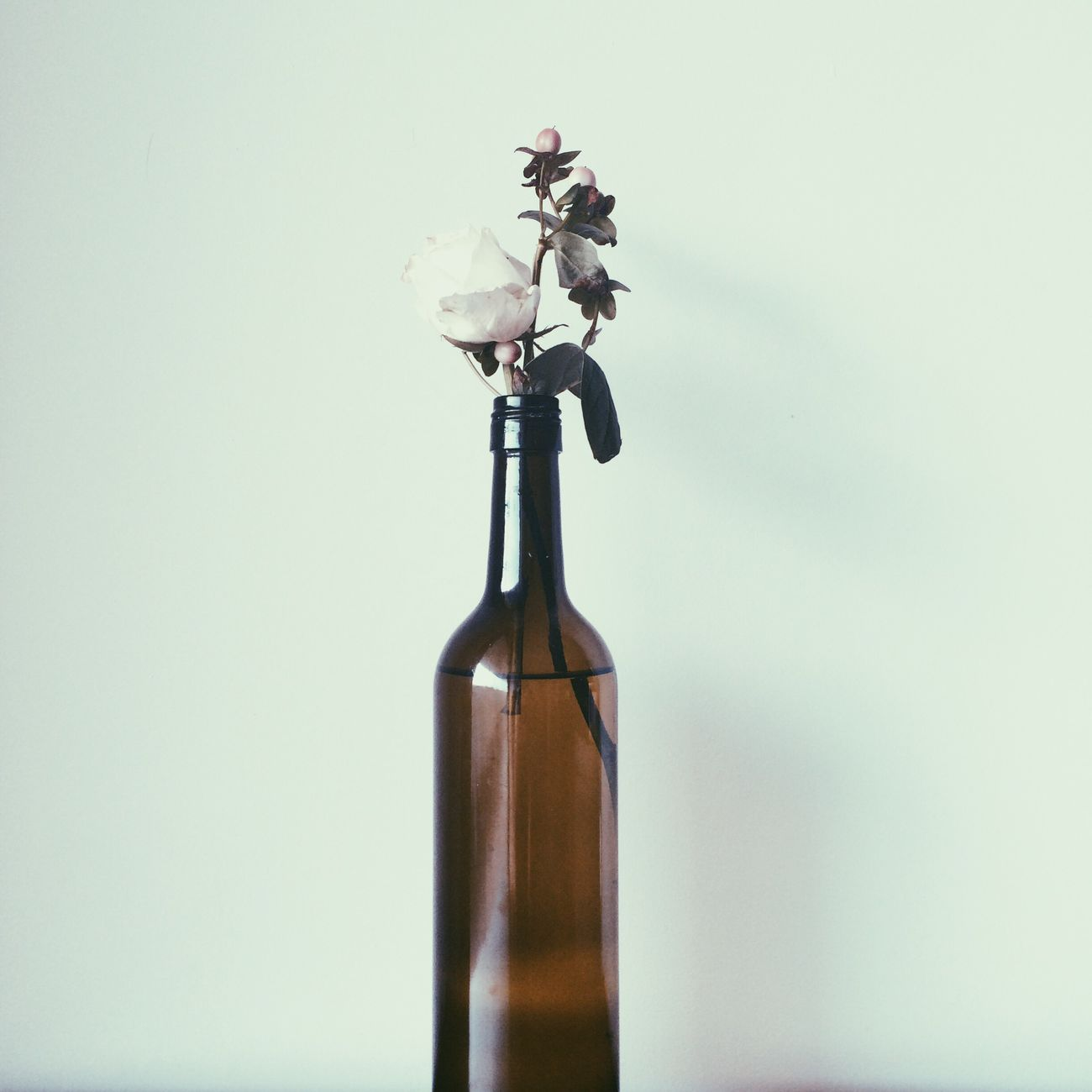 Give me Roses and Wine Roses&wine White Rose Winebotttle Decoration Decor White Wall Flower Rose🌹 Roses Flowers  Roseporn Nature_collection Interior Wall Art EyeEm Best Shots EyeEm Gallery Eye Belgium