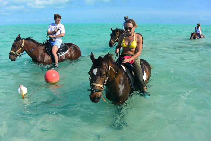 Woman (me) horseback riding in Long Bay Beach of Providenciales, Turks and Caicos Islands Horses Long Bay Beach Provo Ponies Turks And Caicos Turks And Caicos Islands Beauty In Nature Day Domestic Animals Horse Horse Photography  Horse Riding Horseback Riding Leisure Activity Mammal Men Nature Ocean One Person Outdoors People Real People Sea Sky Water Waterfront