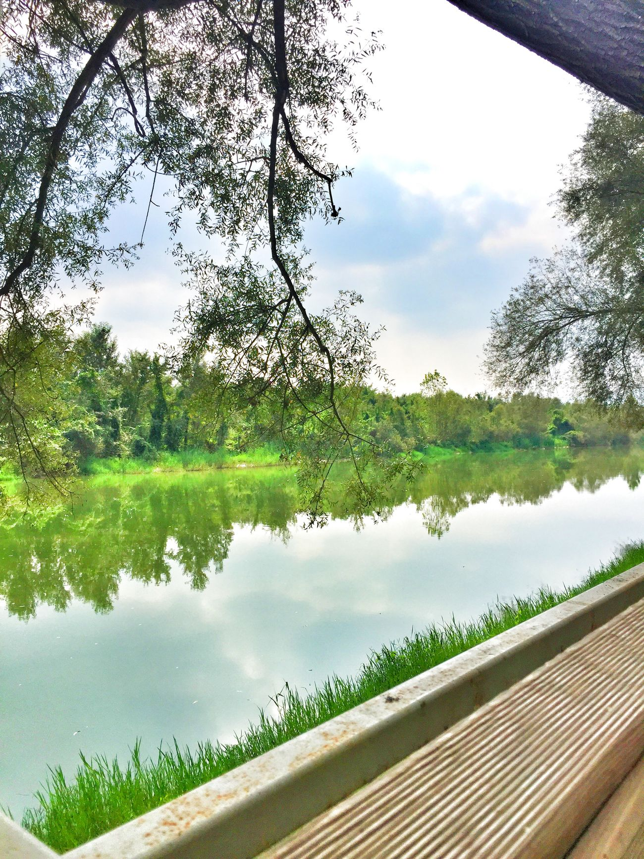 Nehir Sakarya Garden