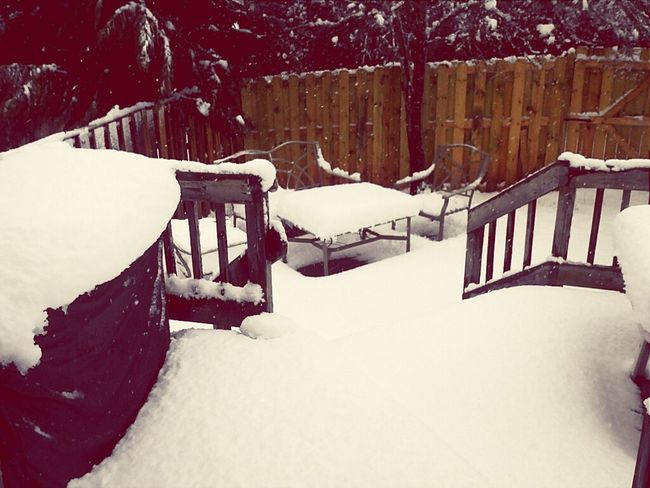 can't see the backyard and the deck anymore