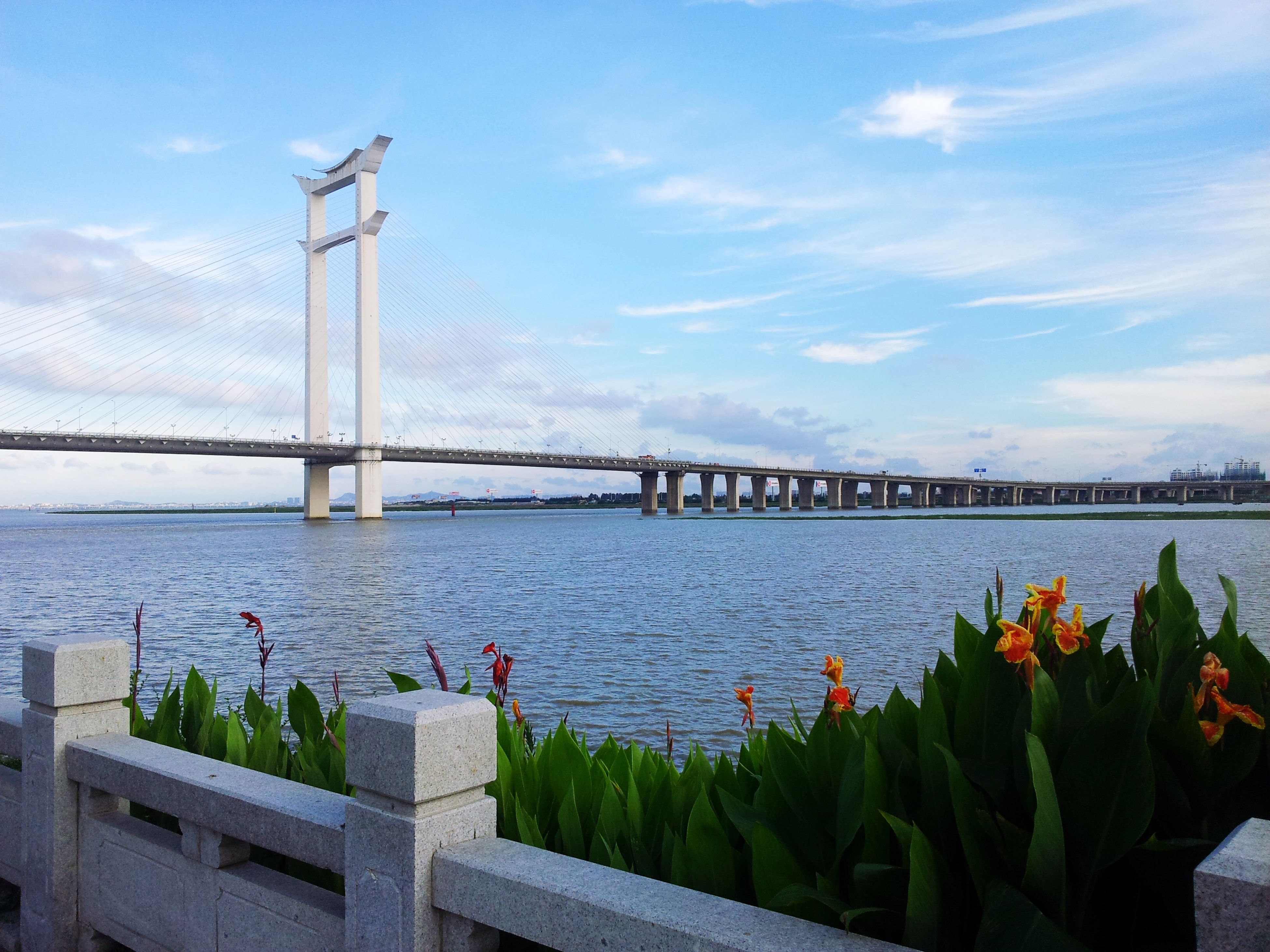 water, built structure, architecture, sky, flower, bridge - man made structure, railing, connection, plant, sea, river, nature, cloud - sky, building exterior, day, outdoors, cloud, beauty in nature, growth, street light