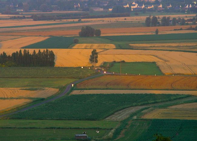 View from Mont Dol 2007 Agriculture Beauty In Nature Beauty Of Nature Bretagne Day Evening Light Farm Field France Grass Landscape Mont Dol Nature No People Outdoors Patchwork Landscape Reflections Rural Scene