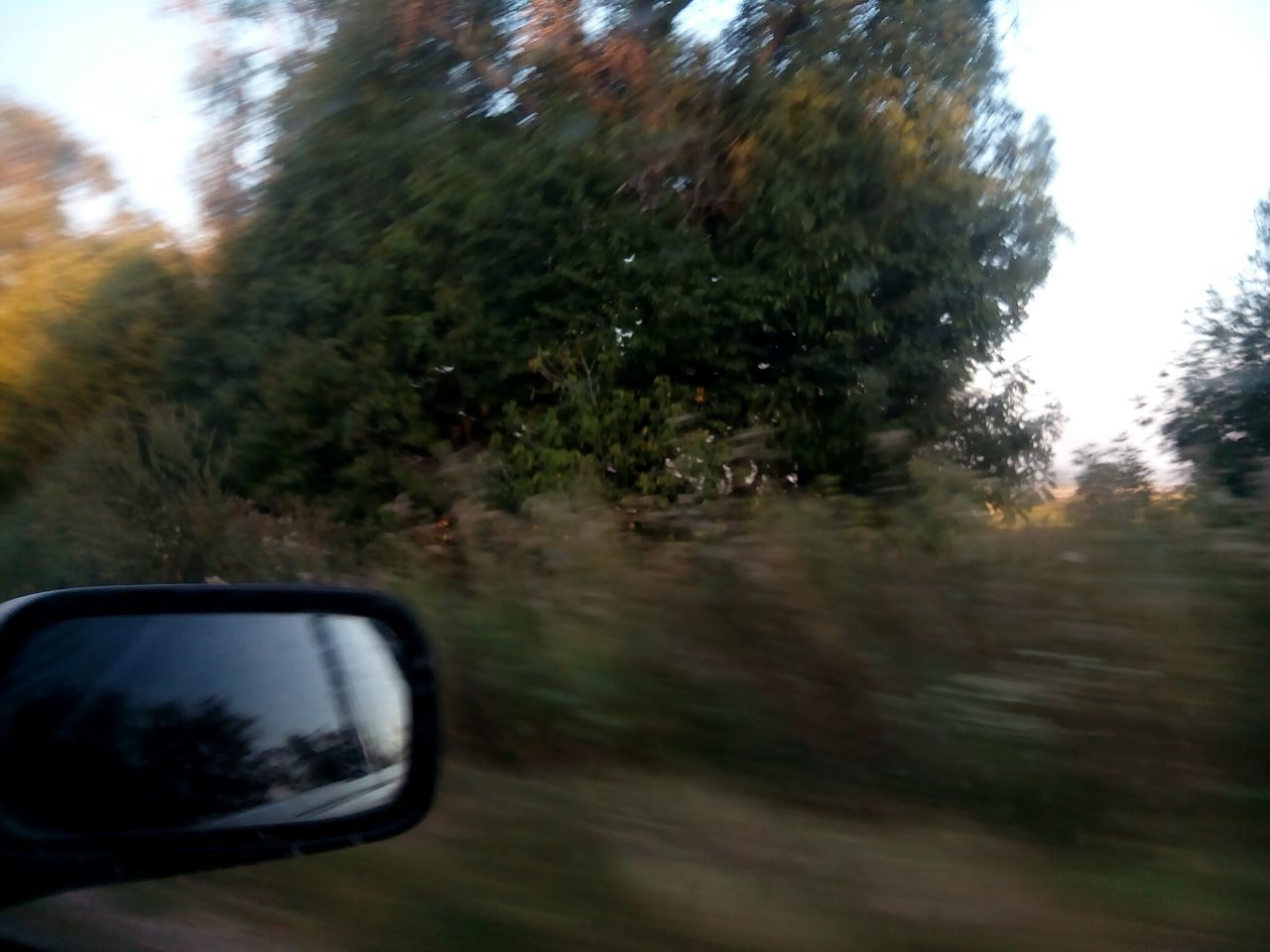 The Drive Tree Car Land Vehicle Transportation Reflection Mode Of Transport Nature No People Day Outdoors Close-up Vehicle Mirror Nature_collection Nature Photography Trip Travel Travel Destinations Tranquility Scenics Environment
