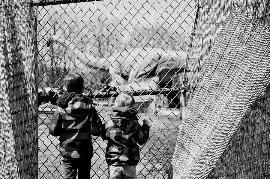 Boys And Their Toys Dino Park Always Closed Watching Through Fance View