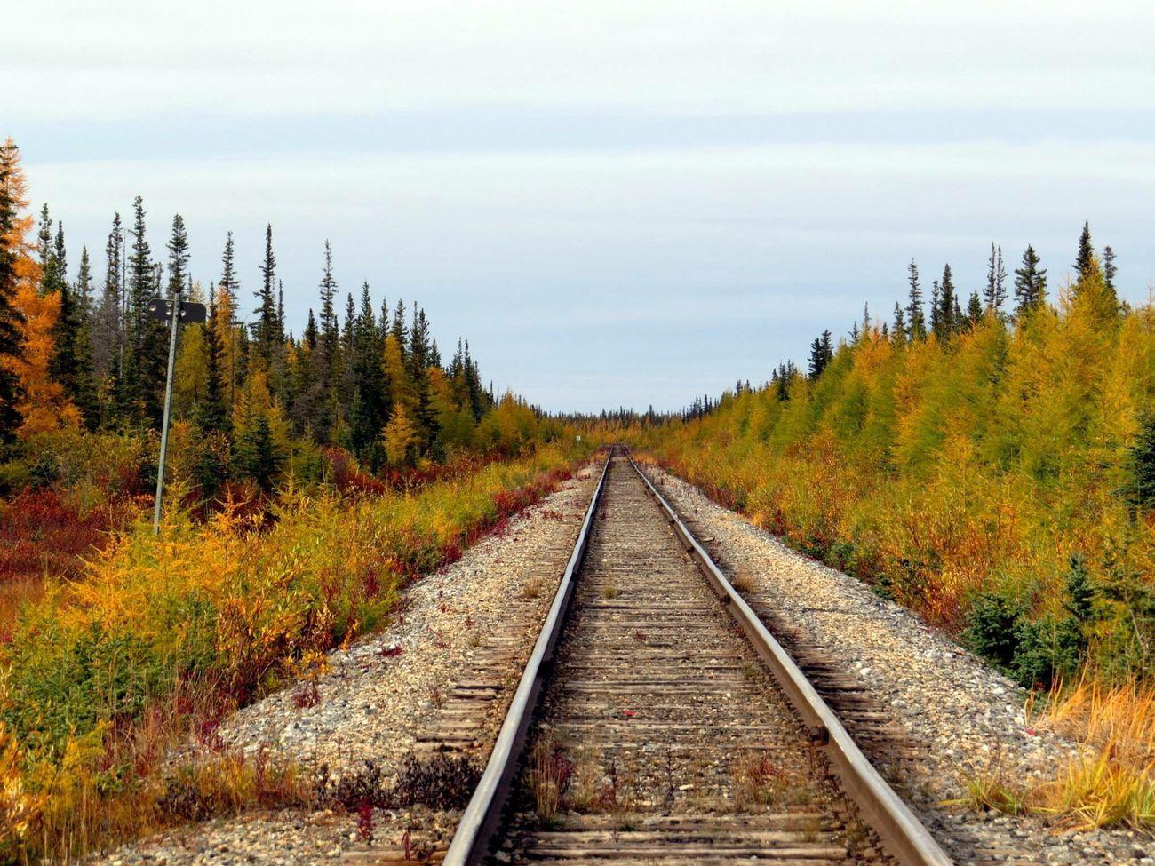Colourful fall Fall Time Railway Track