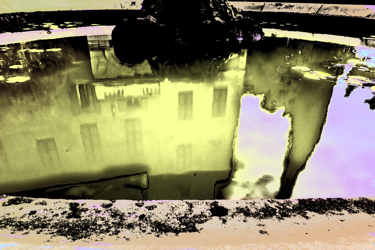 italia Acquerello Architecture Art Arte ArtWork Botanical Gardens Botanischer Garten Close-up Costa Azzurra Côte D'Azur Day Giardini Hanbury Giardino Italia Italie Italien Italy Italy❤️ Italy🇮🇹 Nature No People Outdoors Riviera Ventimiglia Watercolor