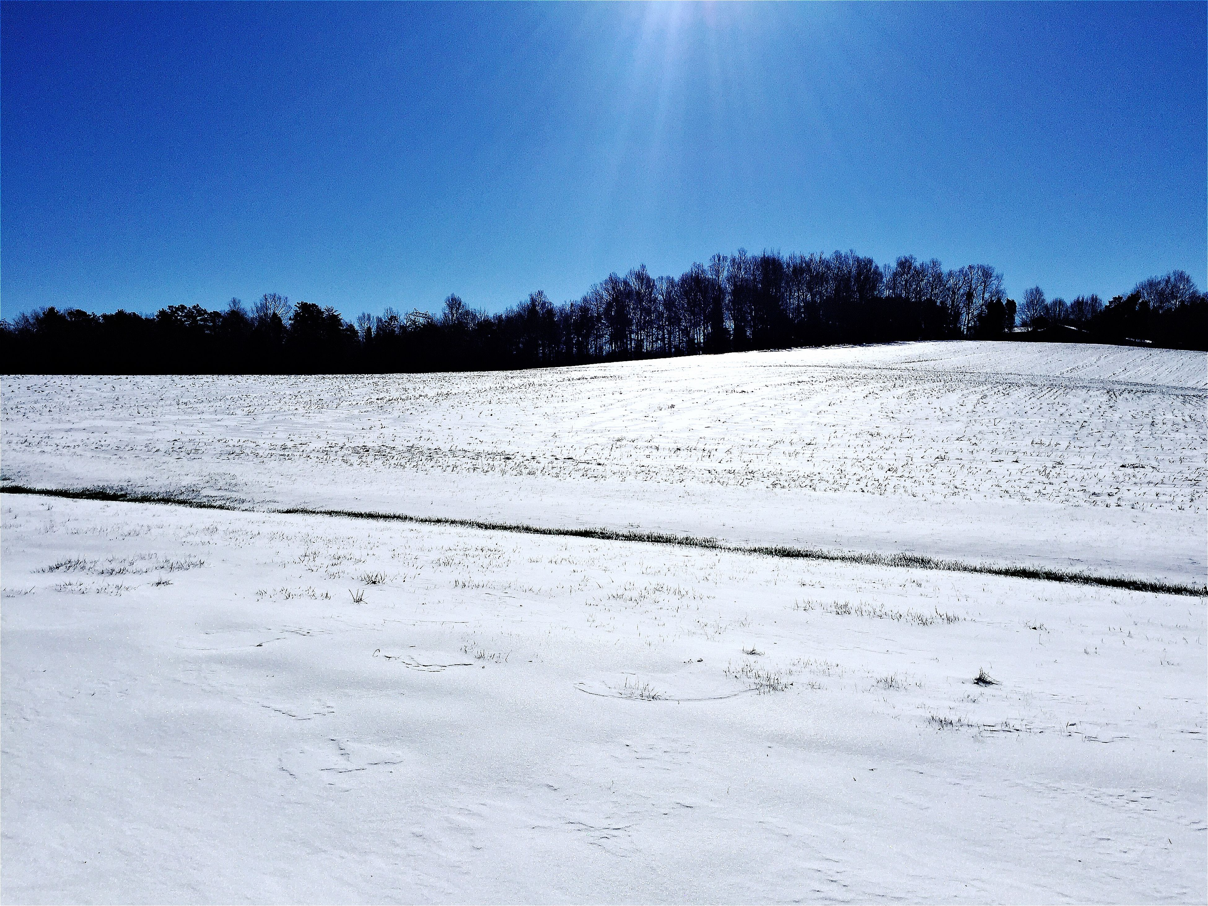 snow, clear sky, cold temperature, winter, blue, tranquility, tranquil scene, landscape, copy space, nature, beauty in nature, scenics, white color, season, tree, sunlight, sand, field, non-urban scene, white