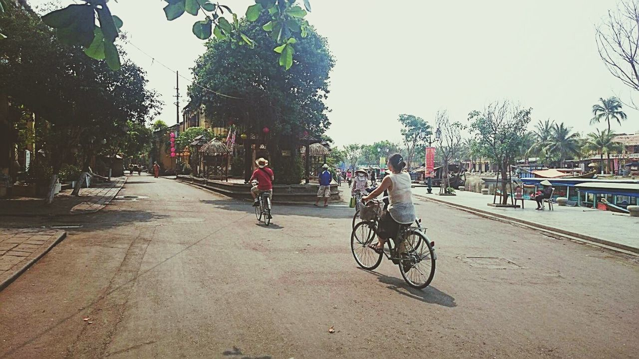 Bicycle Tree Transportation Mode Of Transport Cycling Sky Land Vehicle City Outdoors Large Group Of People People Day Adults Only Only Men Adult Hoi An Hoian, Vietnam Danang Danangcity Danang Style danang Only Women Young Adult Travel Travelwomansecrets