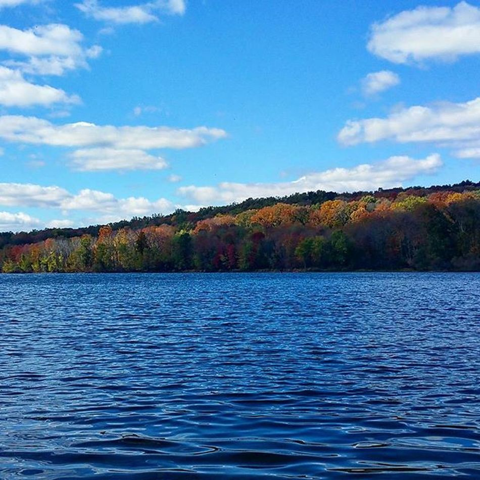 Beautiful day! Perfect Fall Changing Change Colors Lakegalena Peacevalleypark Pennsylvania Perfectday Walk Lakeside Blue Blueskies