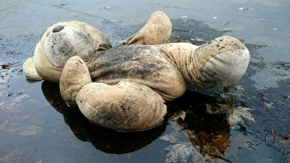 Abandoned Teddybear Toy Childrens Play Ground DramaticToyscene Autumn🍁🍁🍁