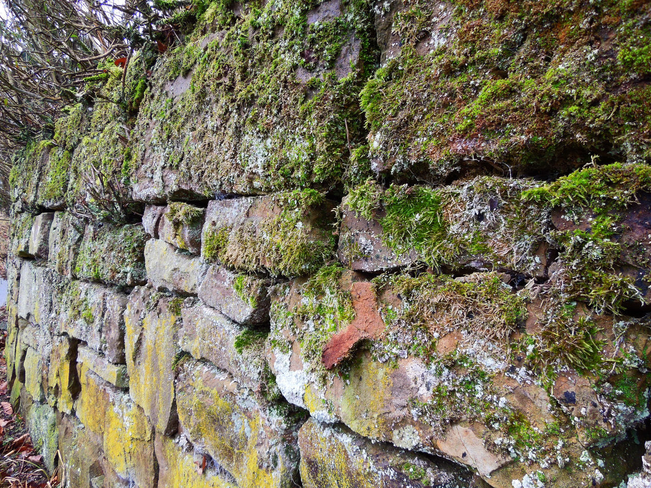 Backgrounds Beauty In Nature Brick Brick Wall Bricks Brickstones Day Full Frame Germany Lines Moss Mossy Wall Nature No People Ostwestfalen Outdoors Pattern Rough Textured