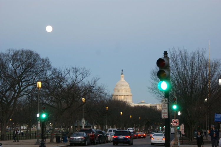 Architecture Bare Tree Built Structure Capitol City City Dome Full Moon Green Light Illuminated Moon Night Sky Travel Destinations US Capitol Building