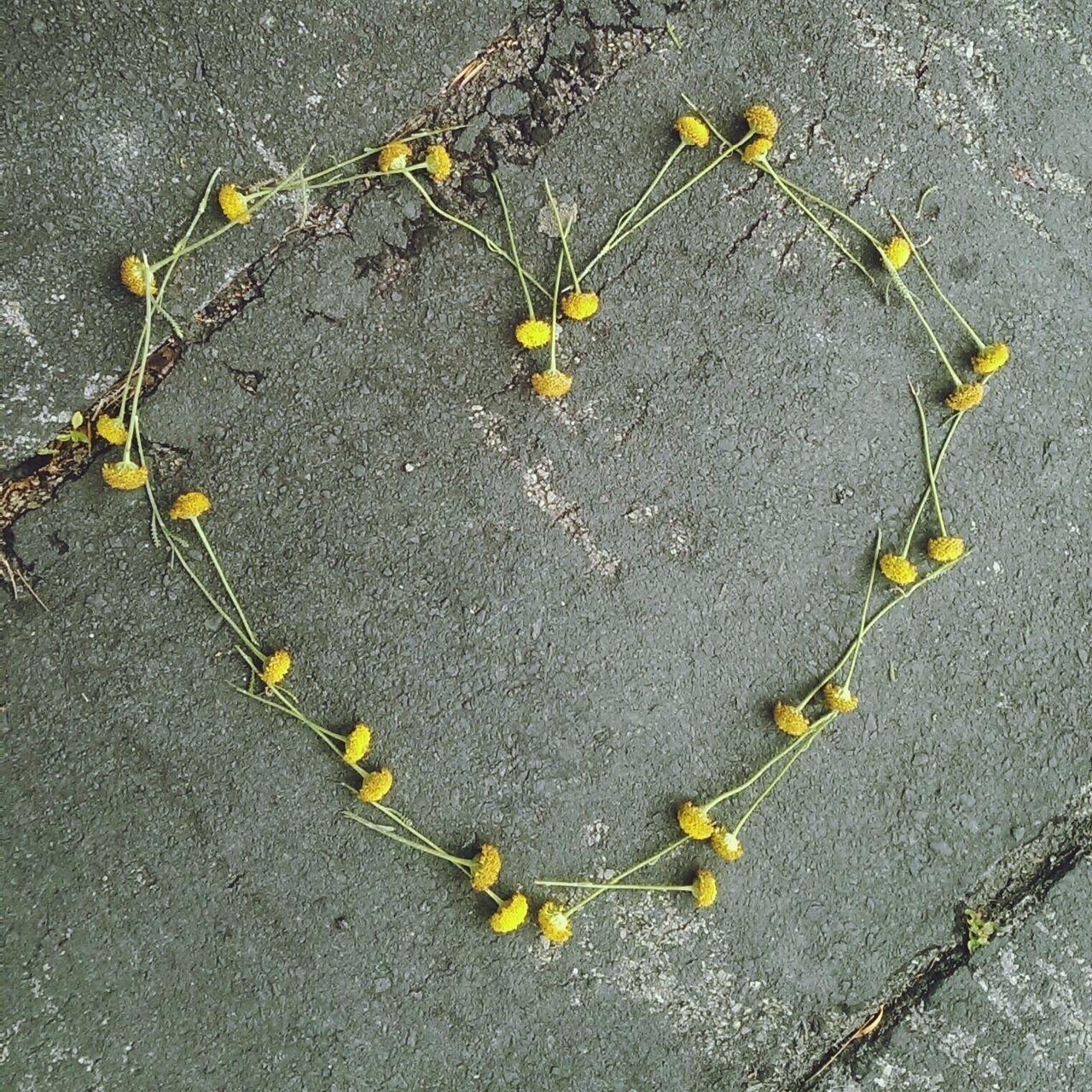 Heart shape made by flowers on street