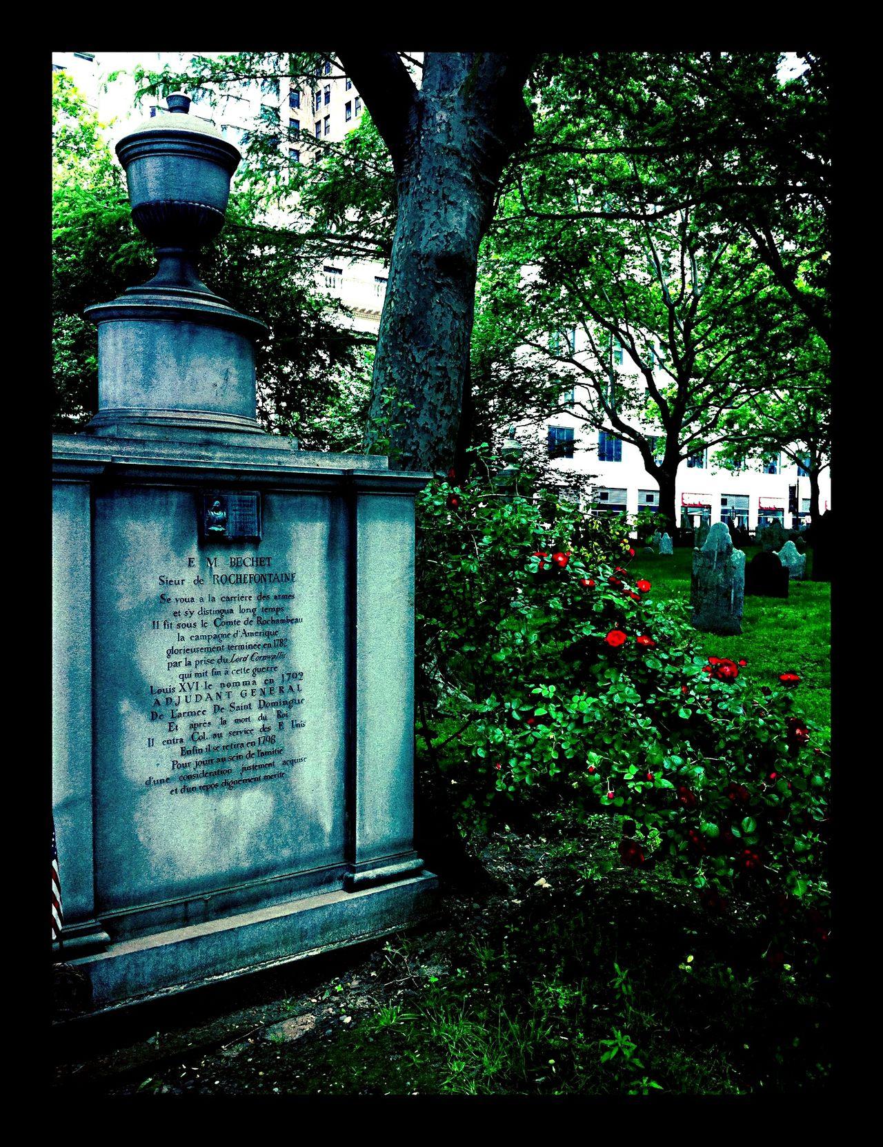 Color Photography Historical Building Church Graveyard Architecture EyeEm Best Shots Sculptures Flower Garden Life
