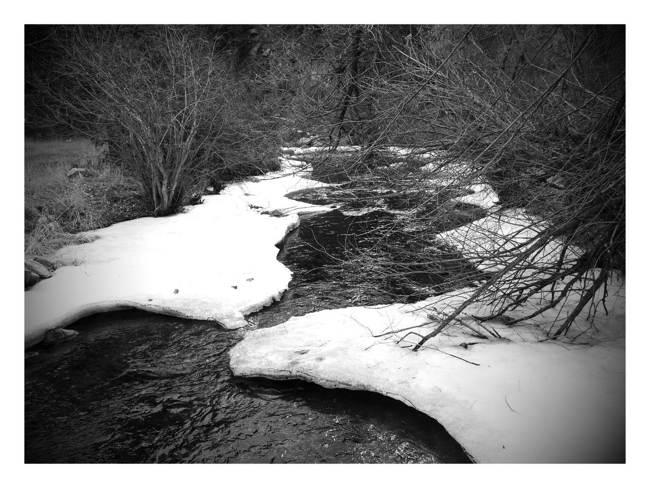 River Blackandwhite Black And White Black & White High Contrast High Angle View Textured  Abstract Backgrounds River Collection Curvy & Beautiful Snow Covered Melting Snow Melting Ice Snowy Scene Snow Covered Landscape Riverside Riverview On The River Above View Nature Branches Silhouette High Contrast Bnw High Contrast Image