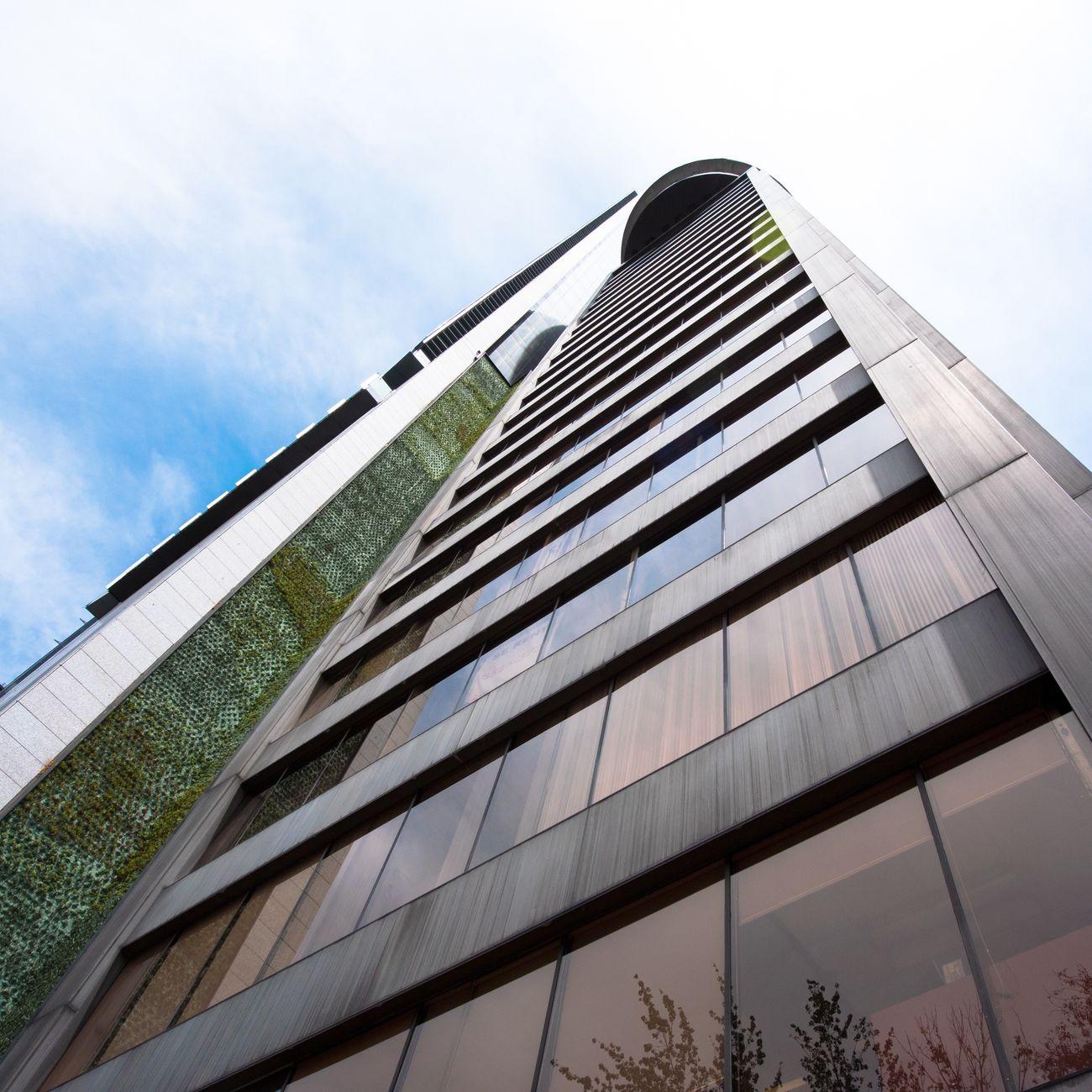 Muro Verde 🍃 The Architect - 2016 EyeEm Awards Architecture Mexico