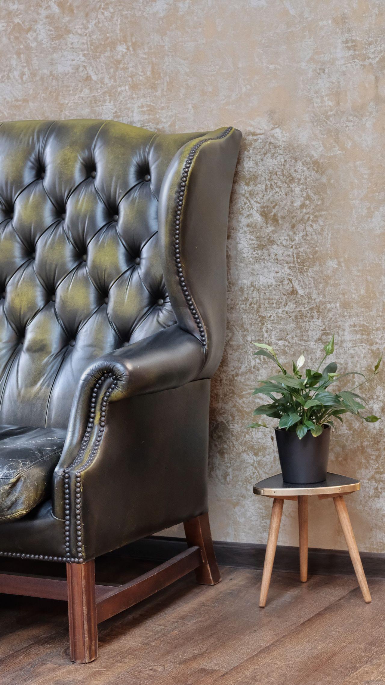 Chair Plant Indoors  Home Interior Armchair No People Living Room Side Table Home Showcase Interior Day FUJIFILM X-T2 Andrea Lück Fujifilm Fujifilm_xseries