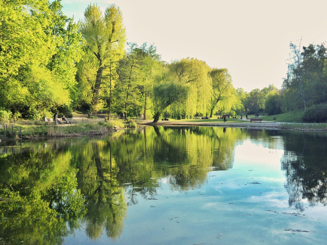 Reflection Lake Water Tree Nature Beauty In Nature Outdoors Sky Scenics Day No People Reflection_collection Berlin Schöneberg Pond Water Reflections Springtime Spring