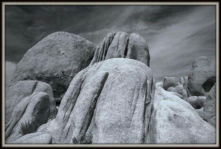 Rocks @ Joshua Tree National Park. Nature_bw Landscape_bw Blackandwhite Scenics Eye4photography  Joshua Tree National Park Taking Photos B&w Monochrome EyeEm Best Shots - Black + White