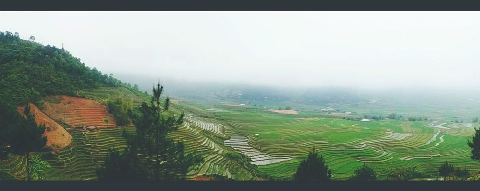 rice Terraces Mucangchai VietNam. I love it So Special So Beautiful  Lovely Lovely Weather. i can see full space Landscape_photography many Photo Shoot
