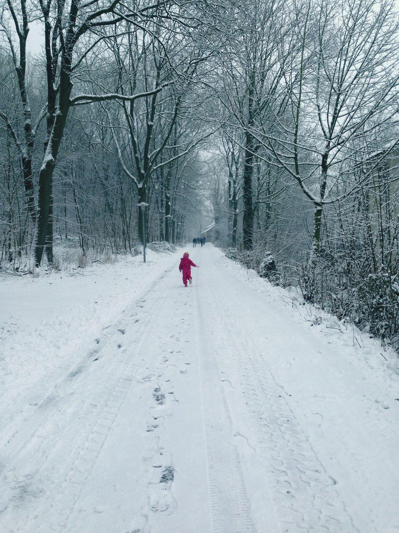 Taking Photos EyeEm Best Shots White Snow EyeEm Winter Nature Collection