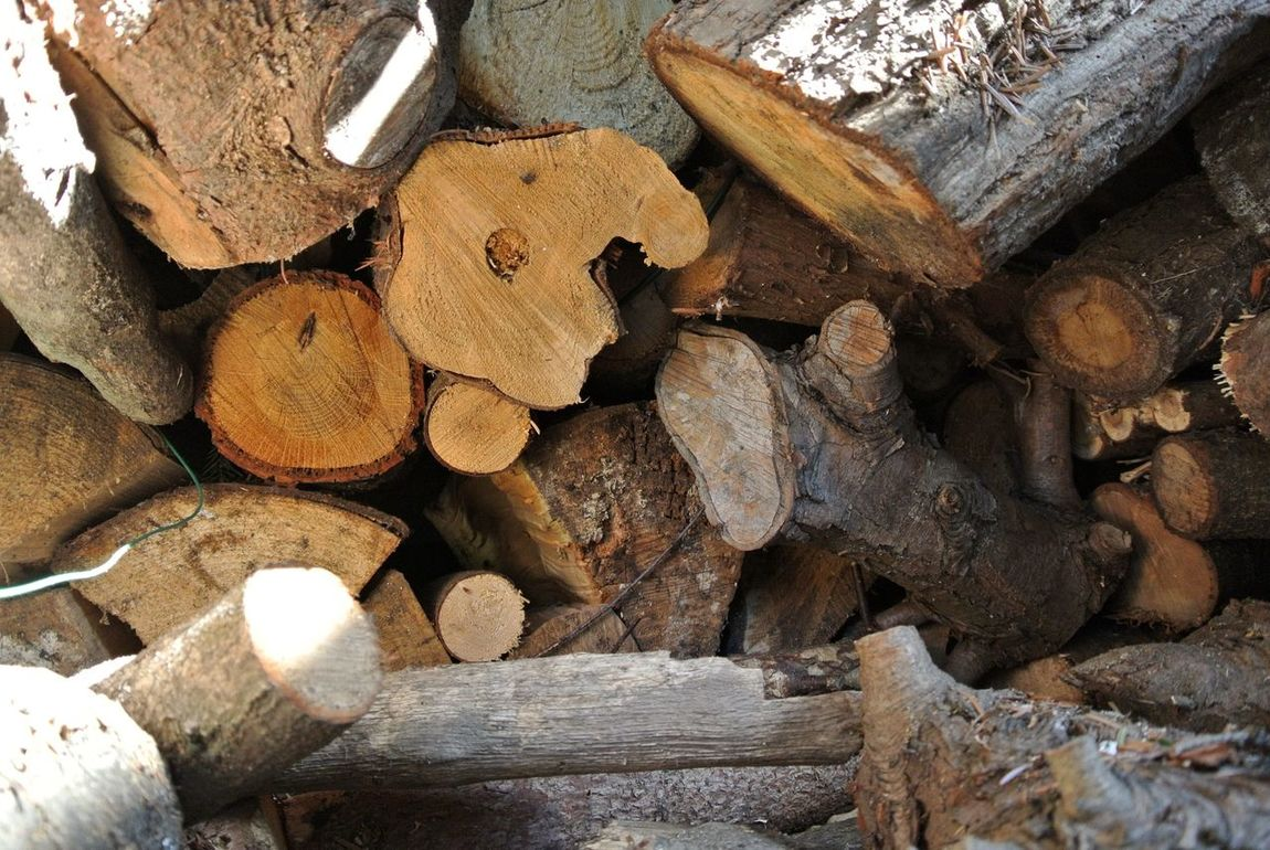Firewood Log Pile Ready For Winter