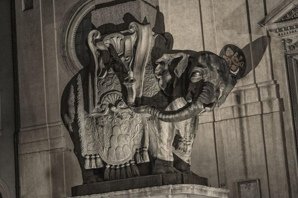 Piazza della Minerva, Elefantino della Minerva. Roma Architecture Art Baroque Bernini Culture Elephant EyeEm EyeEm Best Shots History Italia Italy Marble Minerva Monument No People Roma Rome Sculpture Walking Around