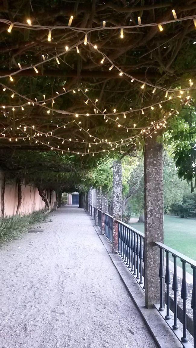 Garden Garden Lighting Columns Lights