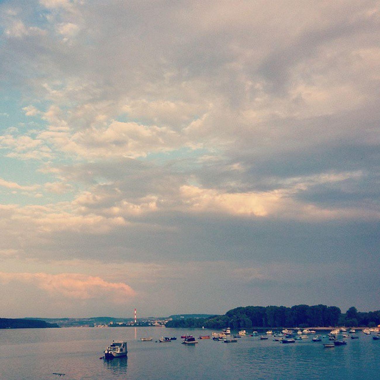 Da bog da stane celi svet, stane bar na tren... 🌟🐾🏇 Pauza Odmor Danube Dunav zemum dunavskikej ig_zemun