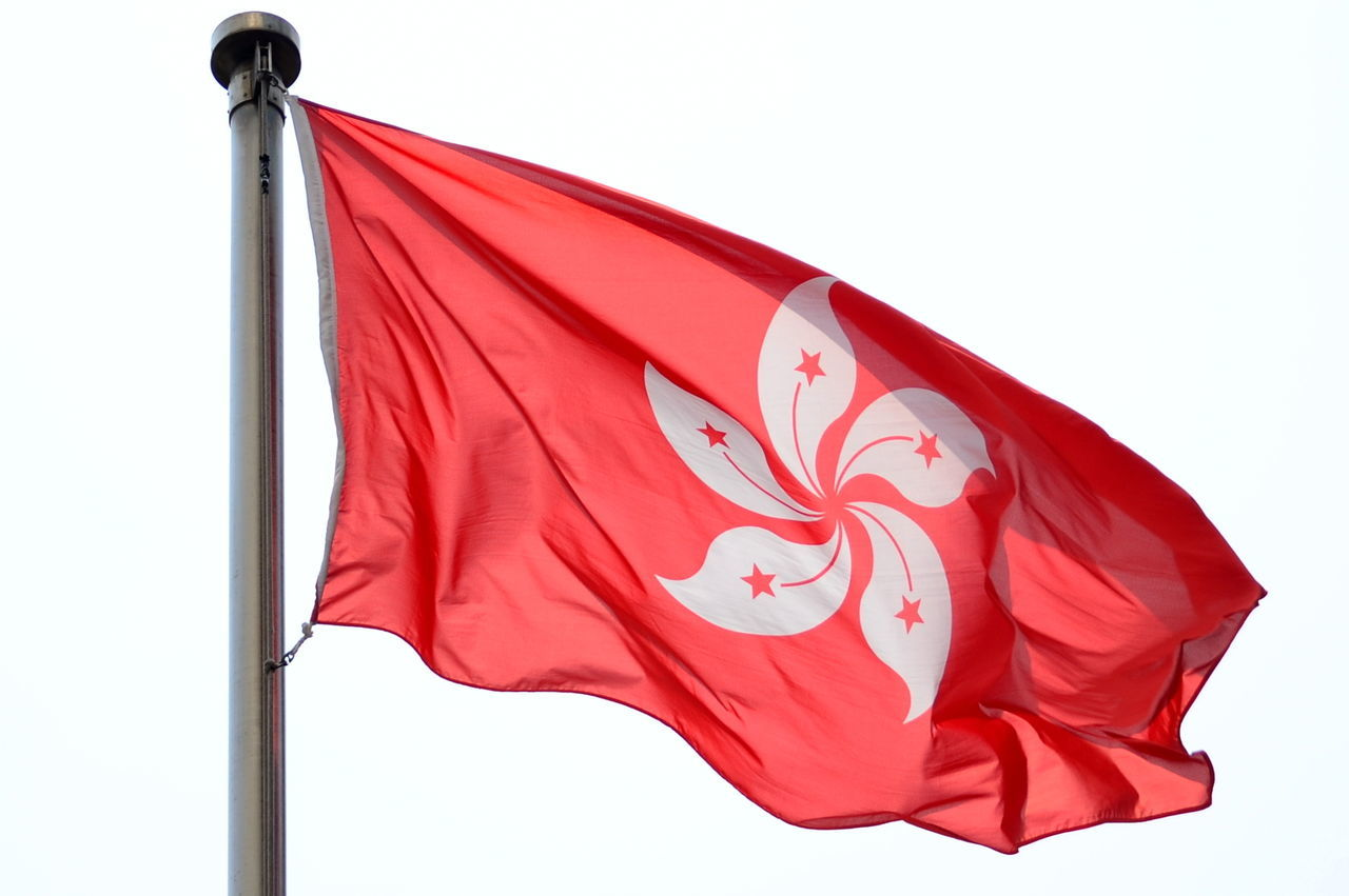 20 Years 20 Years  Bauhinia Bauhinia Blakeana Close-up Day East Meets West Flag Hong Kong Hong Kong Flag Low Angle View National Flag National Pride No People Outdoors Patriotism Pride Red Waving White Background Wind