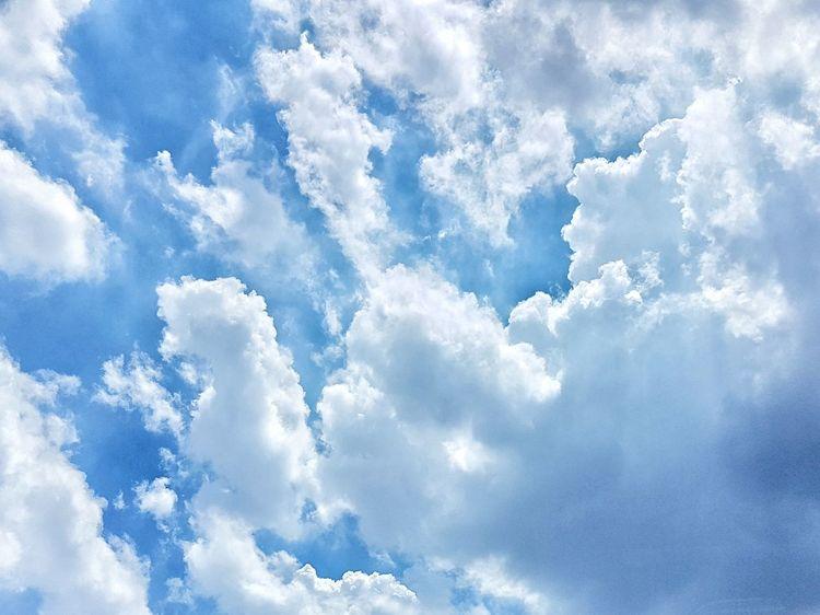 White Clouds And Blue Sky Clouds And Sky Blue Sky Blue Sky And Clouds Puffy Clouds First Eyeem Photo Bangkok Thailand Sky Sky And Clouds Sky_collection Sky_collection Skyporn Sky Porn Sky Lovers