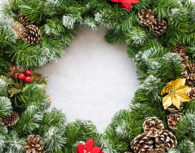 Christmas Wreath on snow Branch Celebraton Christmas Circle Decor Decorated Decoration Evergreen Fir Garland Green Holiday Ornament Ornate Round Season  Snow Traditional Twig Wreath Xmas