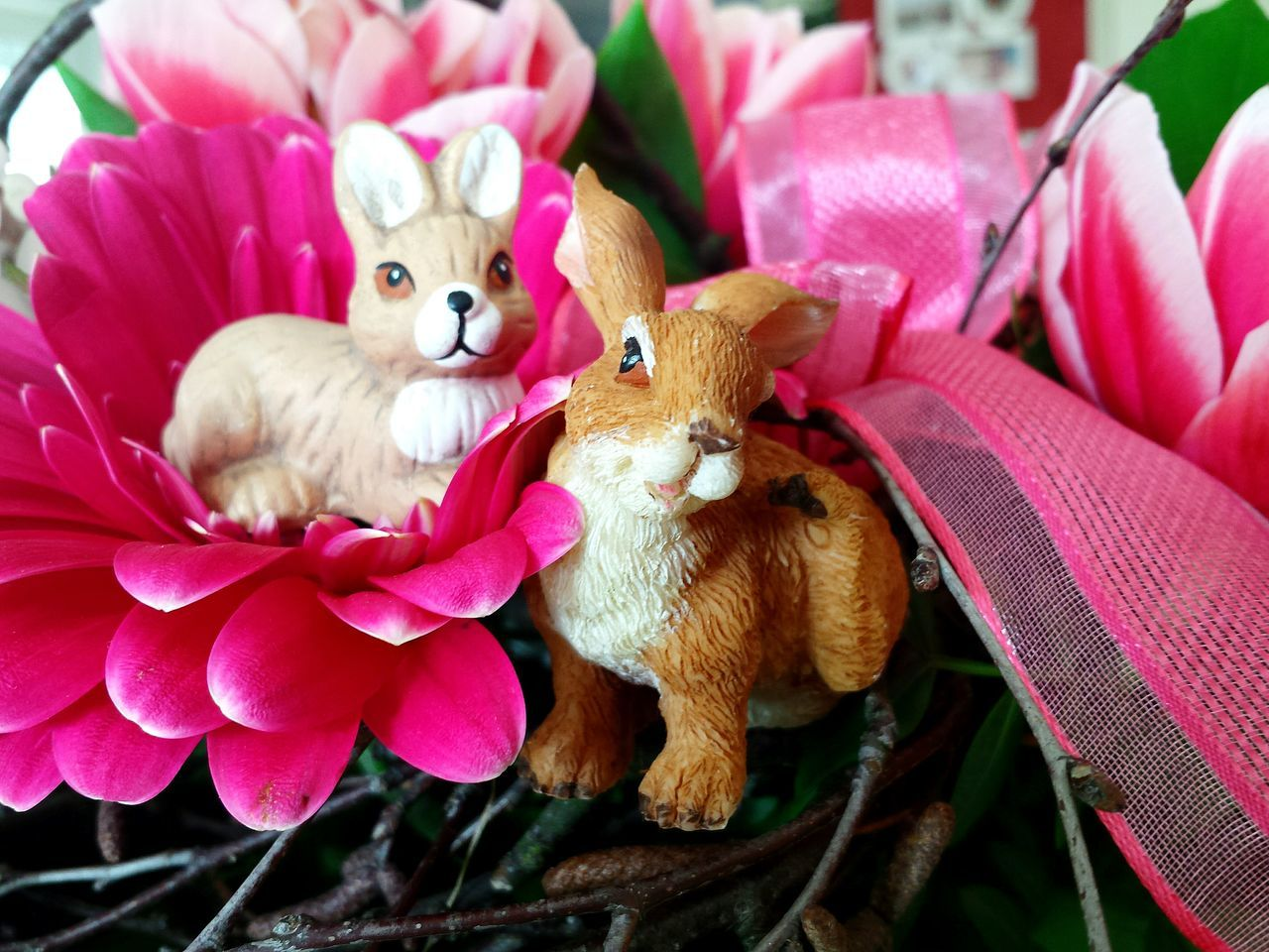 Ladyphotographerofthemonth Joyful Colours Easter Is Coming Soon Easter Bunnies  Easter Pink Pink Flower Pink Flowers Flower Power Flower Collection Flower Arangement Cute Easter Bunnies Cute Easter Decoration Easter Bunny Colourful Think Pink Easter Ready Here Belongs To Me