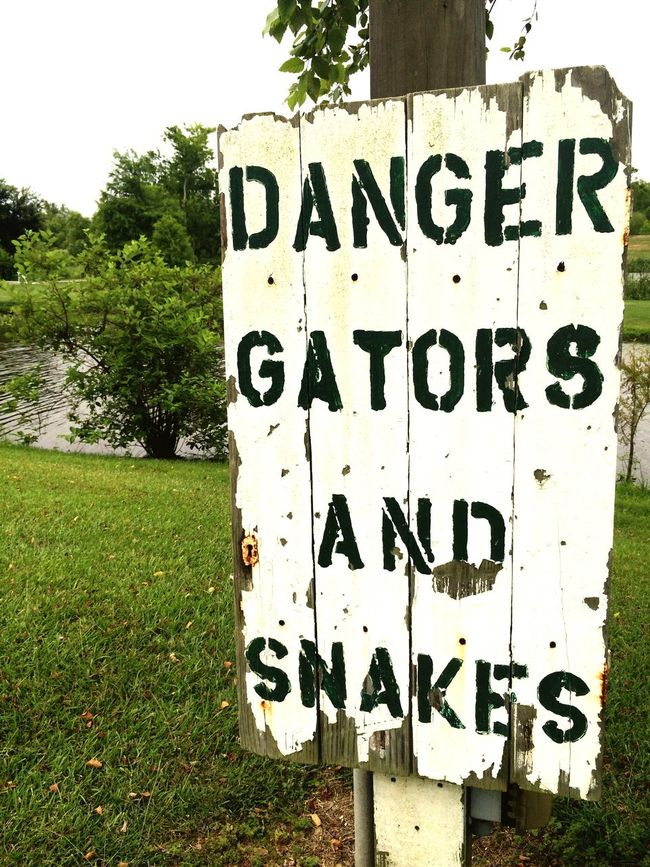 Danger gators and snakes sign Communication Text Road Sign Tree Information Sign Signboard Day Outdoors Grassy Water Warning Sign Alert Snakes Gators Louisiana Aligator Dangerous RISK Forbidden Rustic Authentic Funny Woodland Plantation Plantation Stencil
