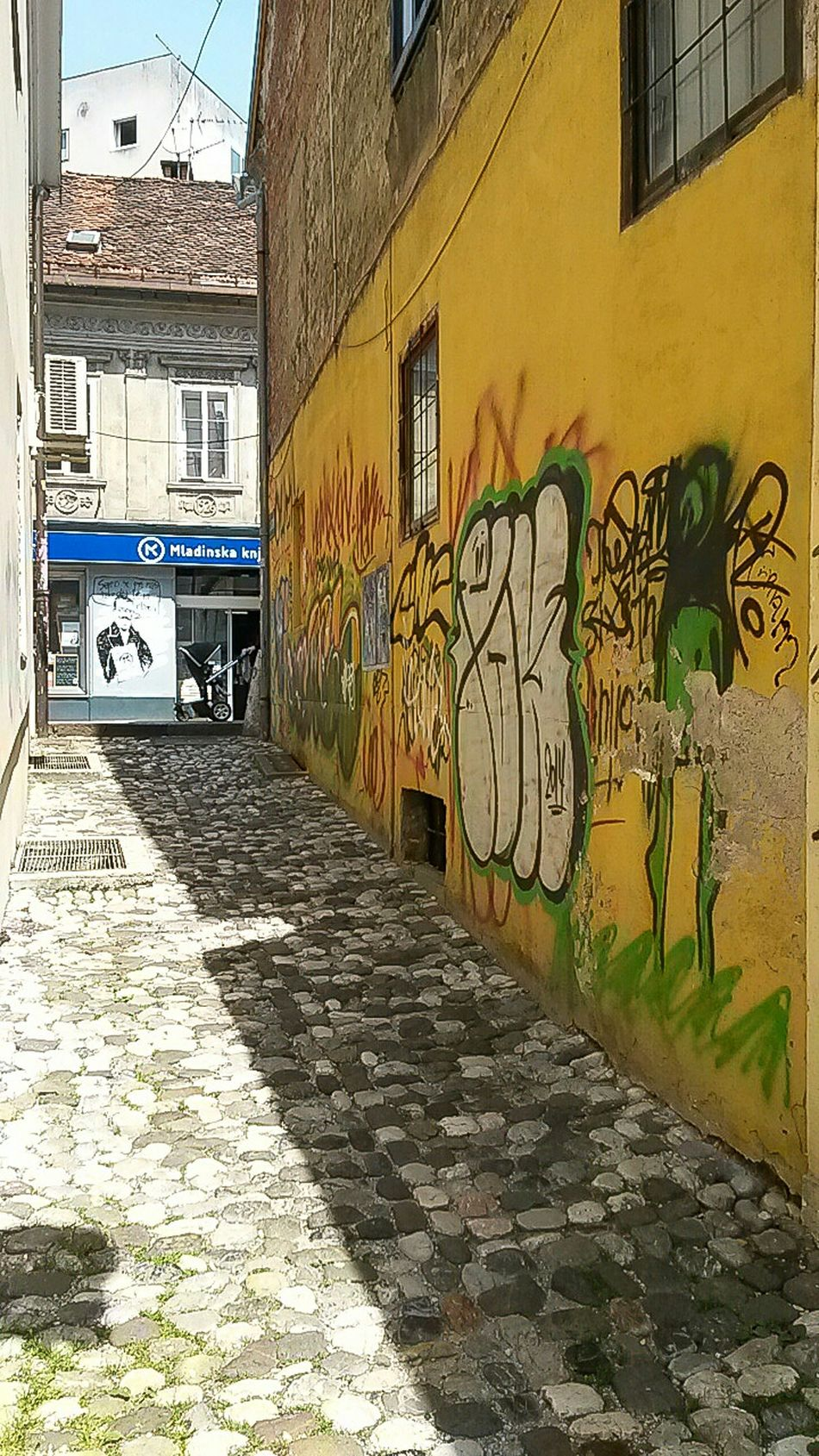 Murales Streetview Shadow Lubiana Lubljiana